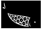 魚のイメージ1